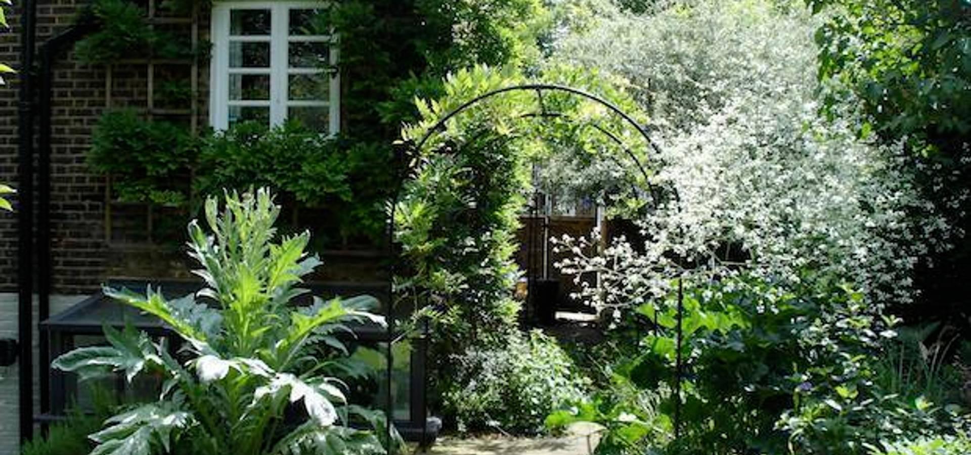Carol S Garden: Carol Whitehead Garden Design: Landscape Designers In