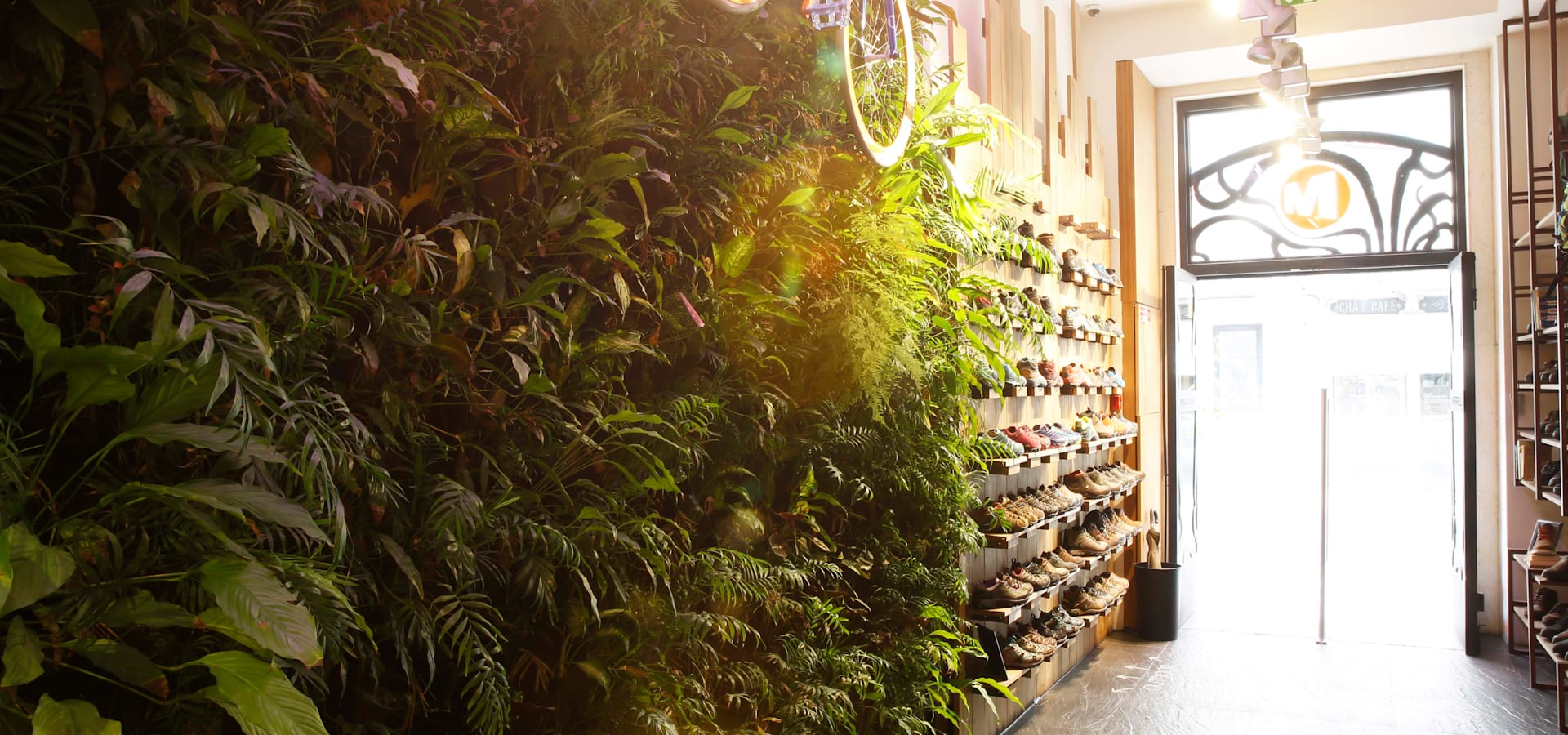 LC Vertical Gardens
