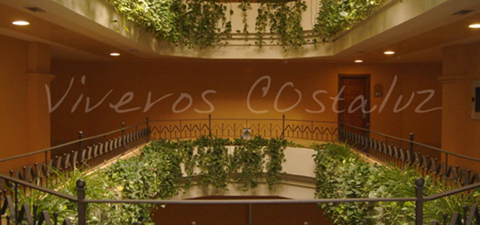 Costaluz decoration&garden