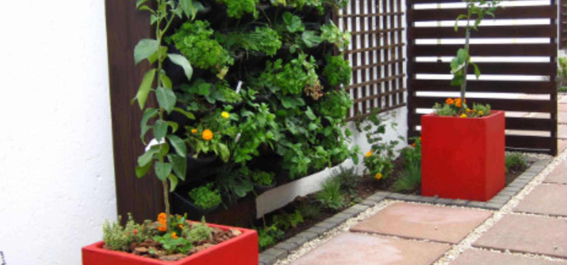 Young landscape design studio landscape designers in for Landscape design studio