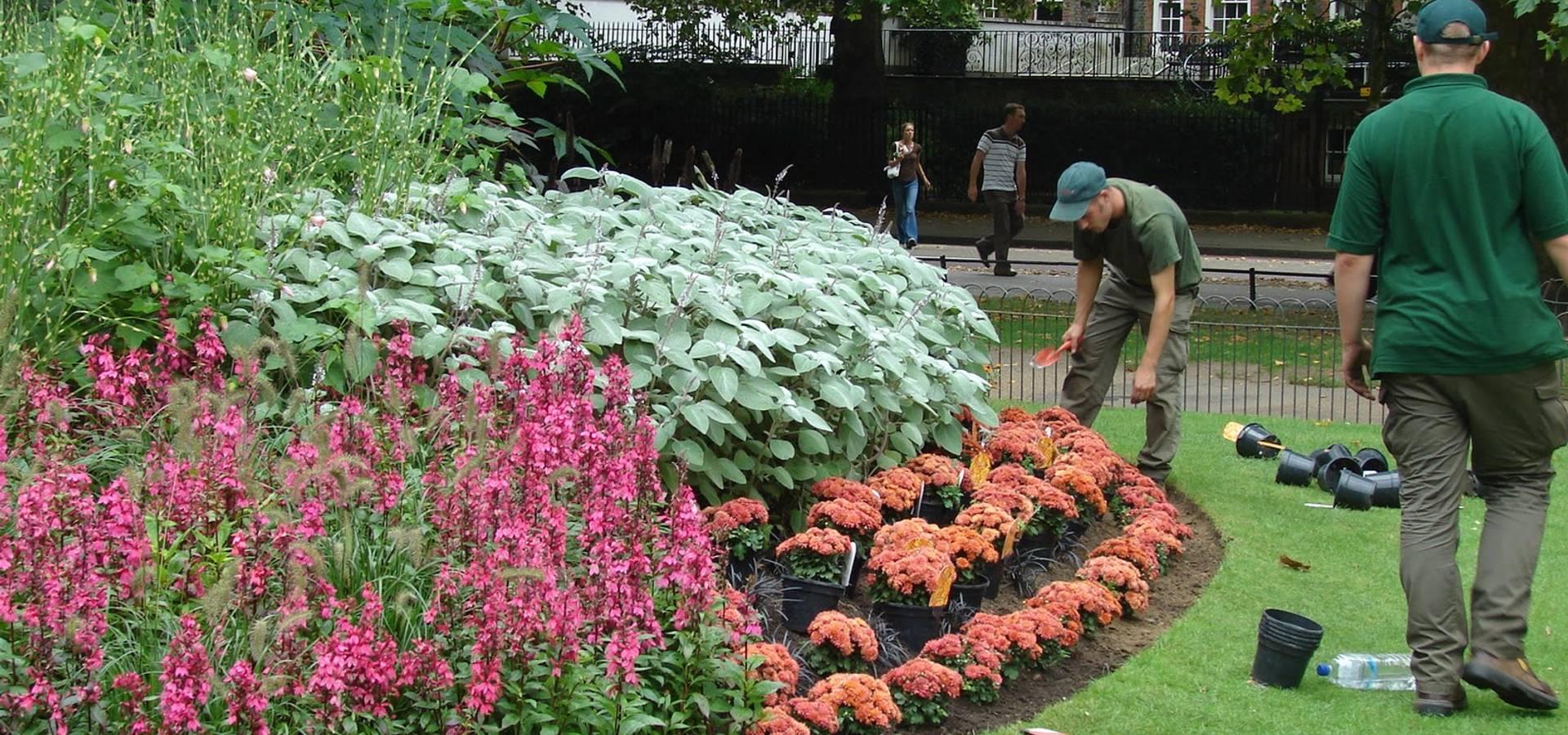 Jardiner a agrotofran s l jardineros en malaga homify - Imagenes de jardineria ...