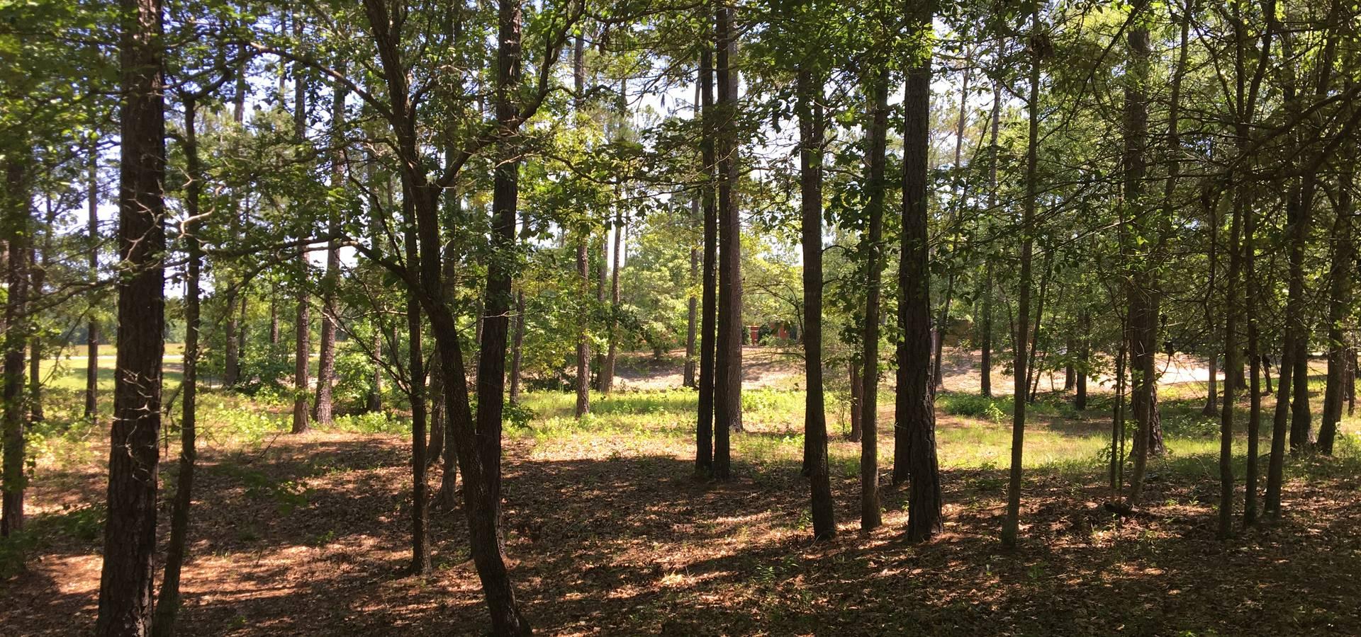 Oakwood Ventures by Jones Pharr