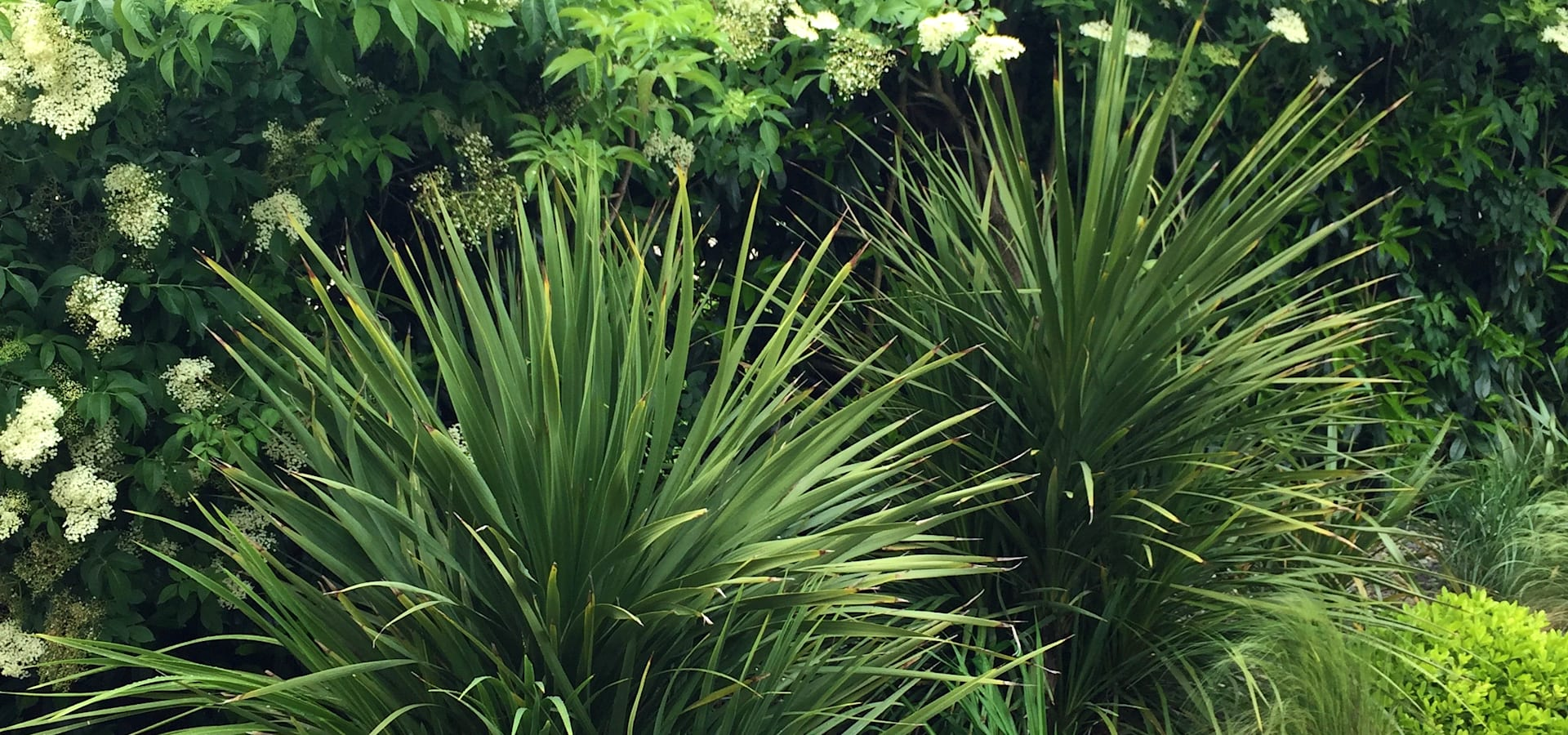 Paradeisos conception de jardin