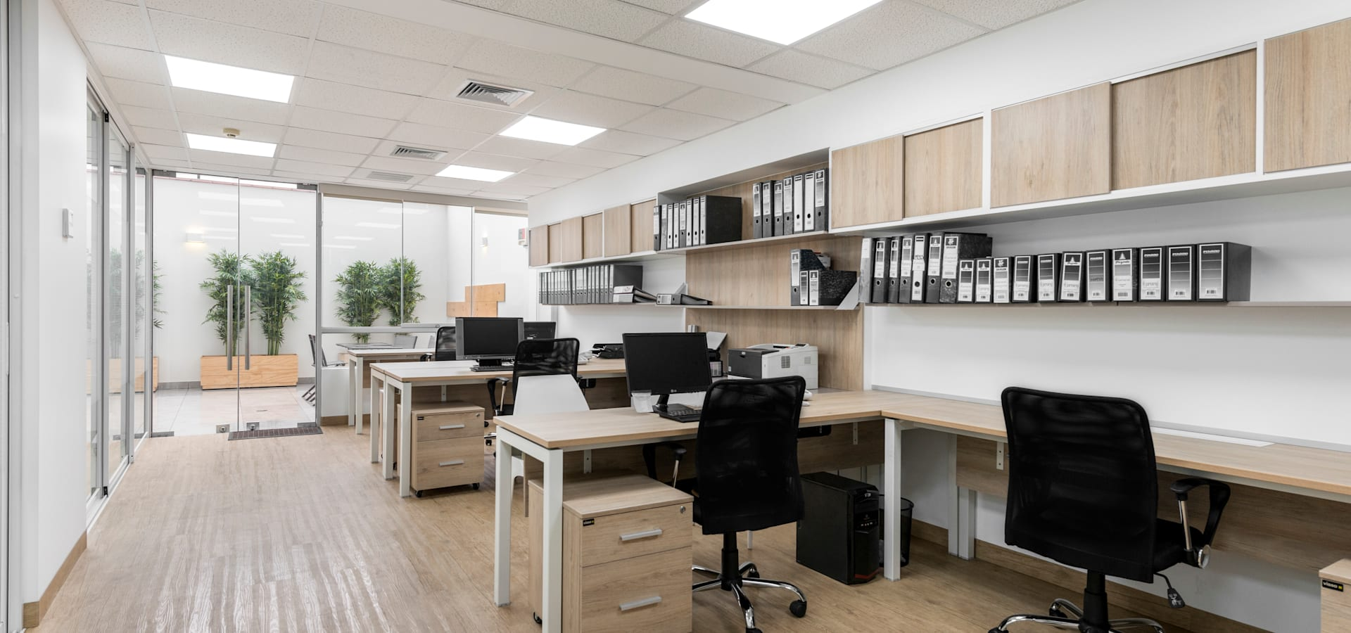 Baum Studio