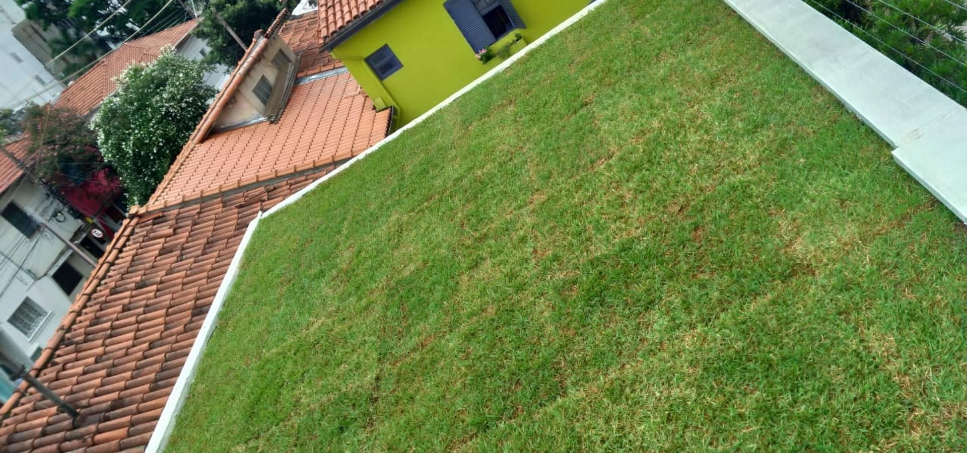 Telhado Verde e Jardim Vertical SP