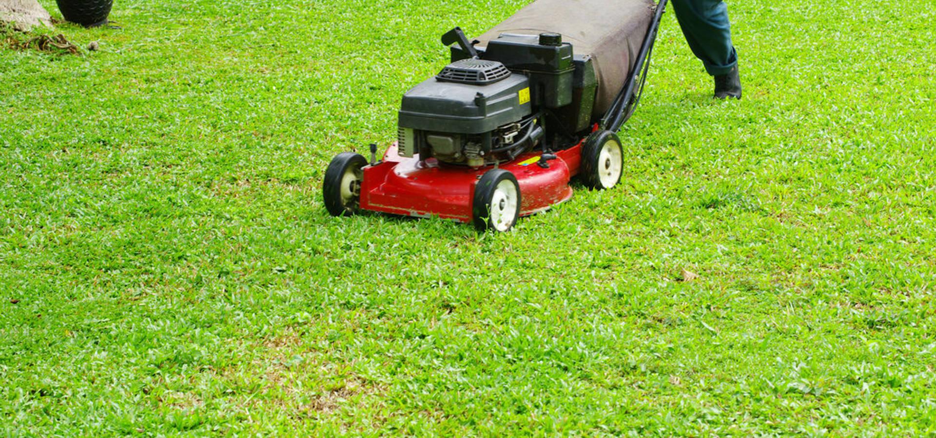 Jacksonville Lawn Service