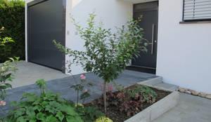 Projekty, nowoczesne Okna i drzwi zaprojektowane przez bohnarchitektur