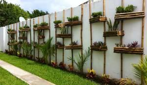 Bambootec: modern tarz Bahçe