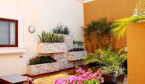 Jardines con maceteros y más...: Jardines de estilo moderno por EcoEntorno Paisajismo Urbano