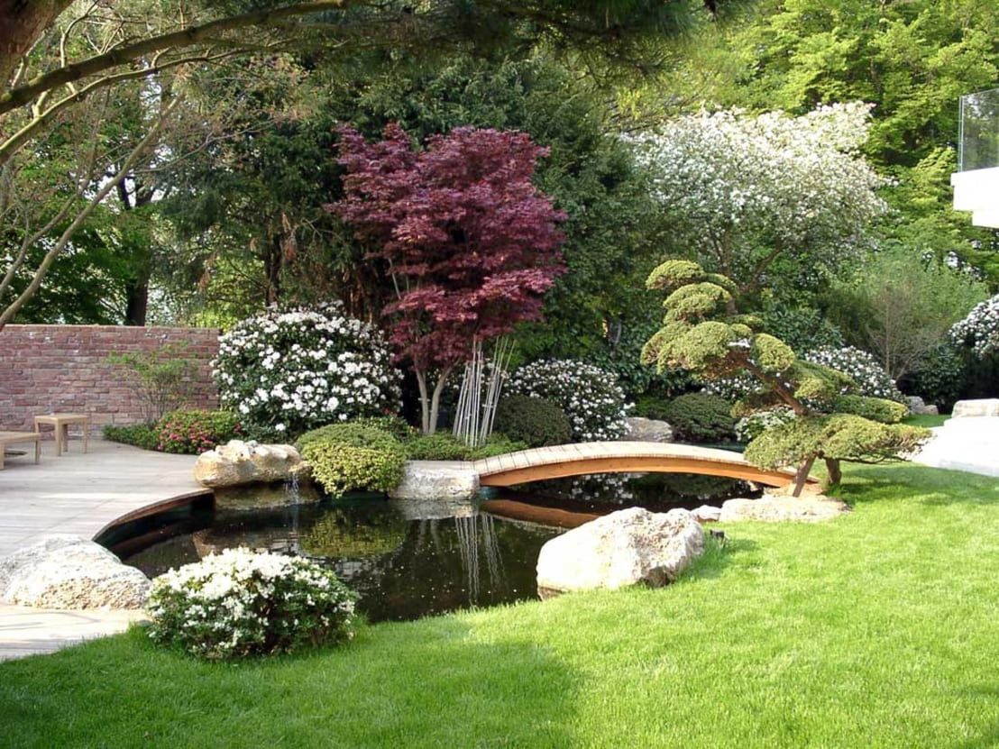 Garden pond ideas for Garden pond design books