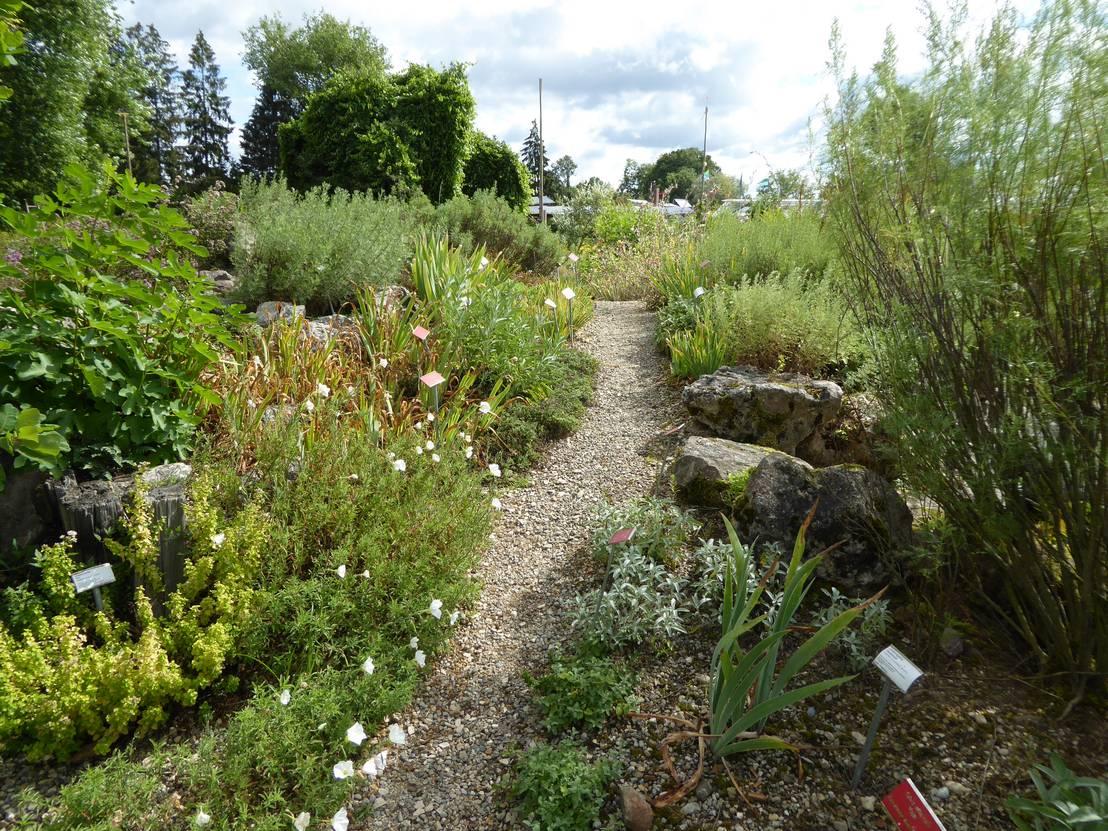 Garten gestalten mal anders wild ist jetzt angesagt for Garten gestalten mediterran