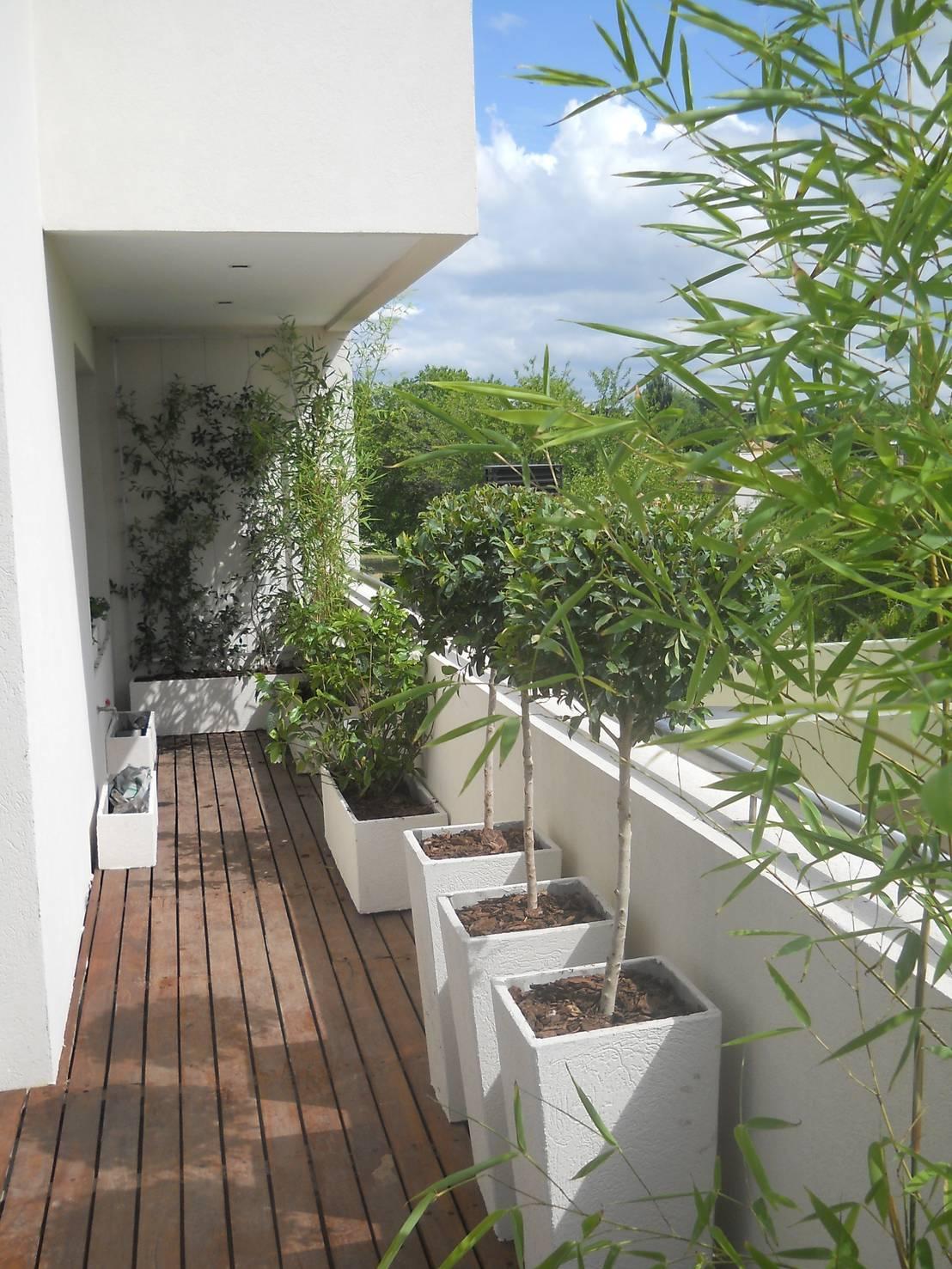 Remodelando un balc n for Jardin vertical en balcon
