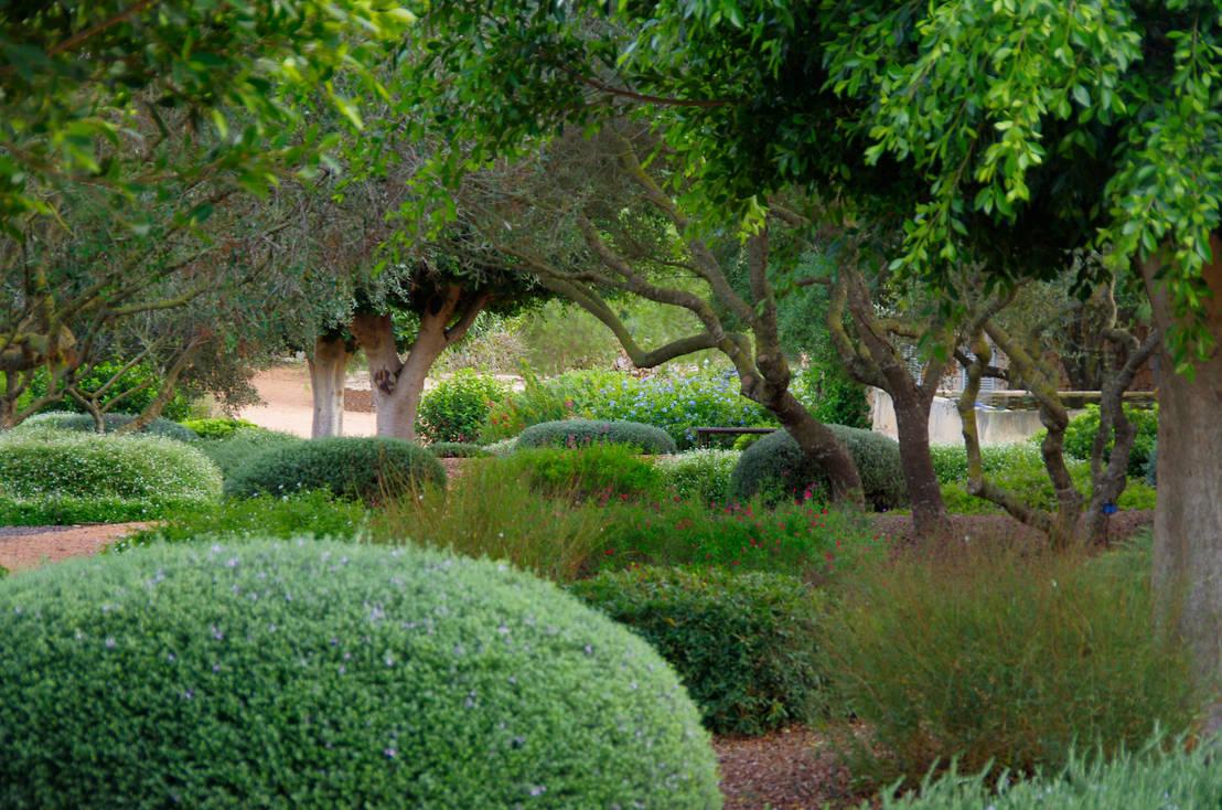 6 consejos para crear un jard n ingl s for Jardin en ingles
