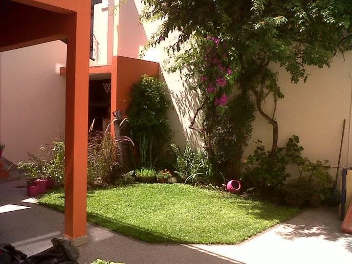 6 formas de tener un lindo jard n en tu patiecito Como tener un lindo jardin