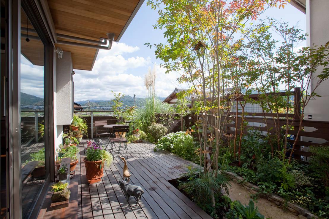 Zotehuelas, ¡más que un patio de servicio!   10 ideas sensacionales