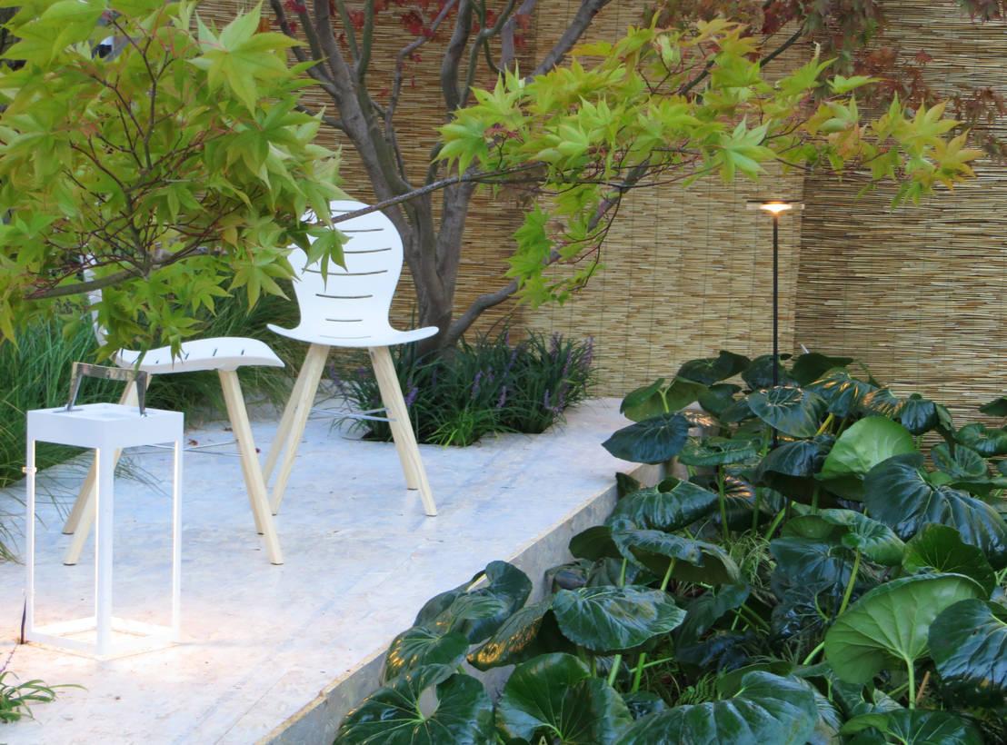 Farfugliando fra farfugium de massimo semola for Progettazione giardini milano