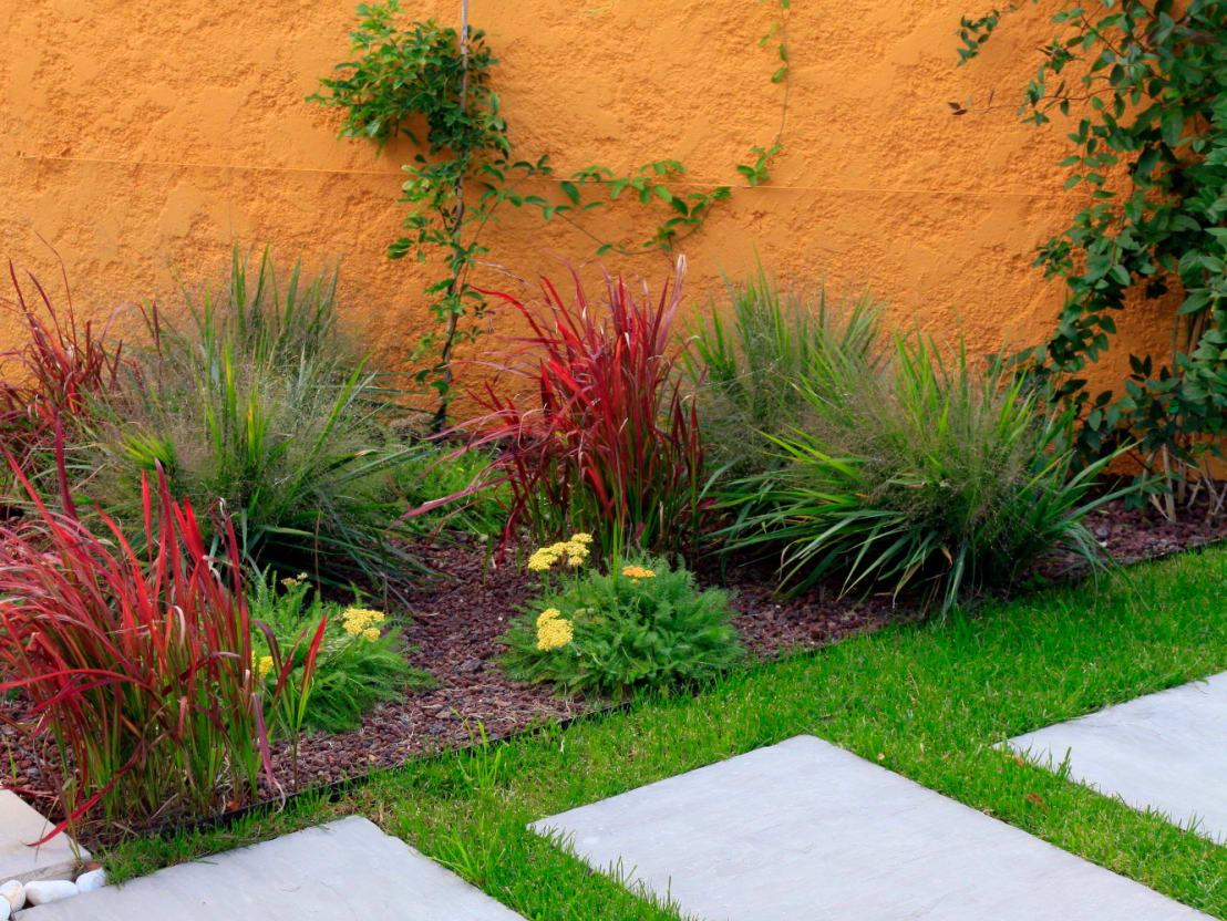salon de provence jardin inspiration jardin mexicain de conceptuelles paysage et decoration. Black Bedroom Furniture Sets. Home Design Ideas