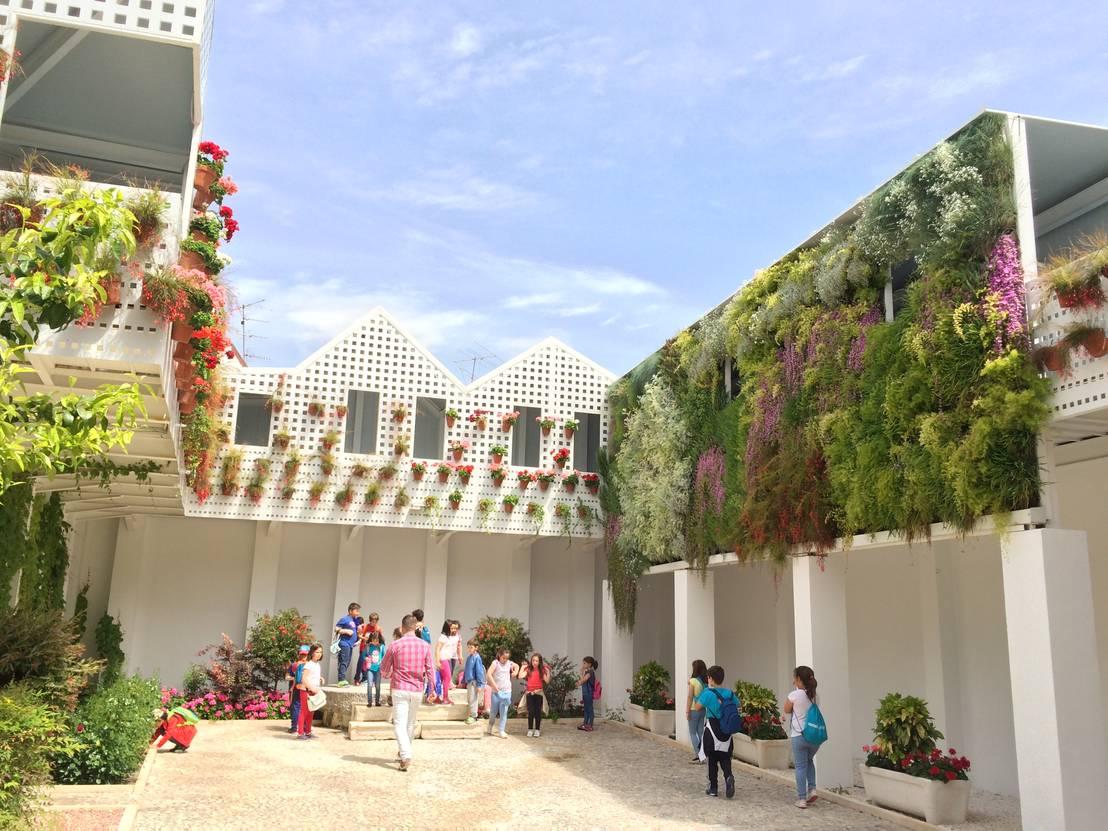 Jard n vertical en antiguas bodega mora por terapia urbana for Jardines verticales sevilla