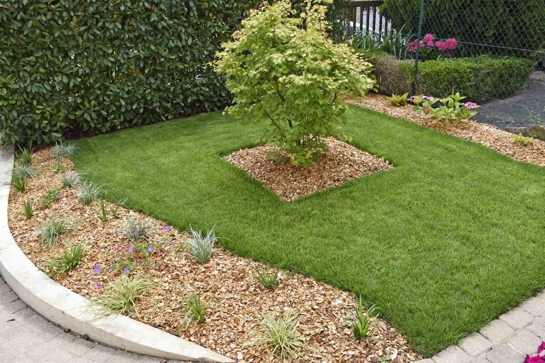 15 jardines sencillos y bonitos que puedes hacer inmediatamente. Black Bedroom Furniture Sets. Home Design Ideas