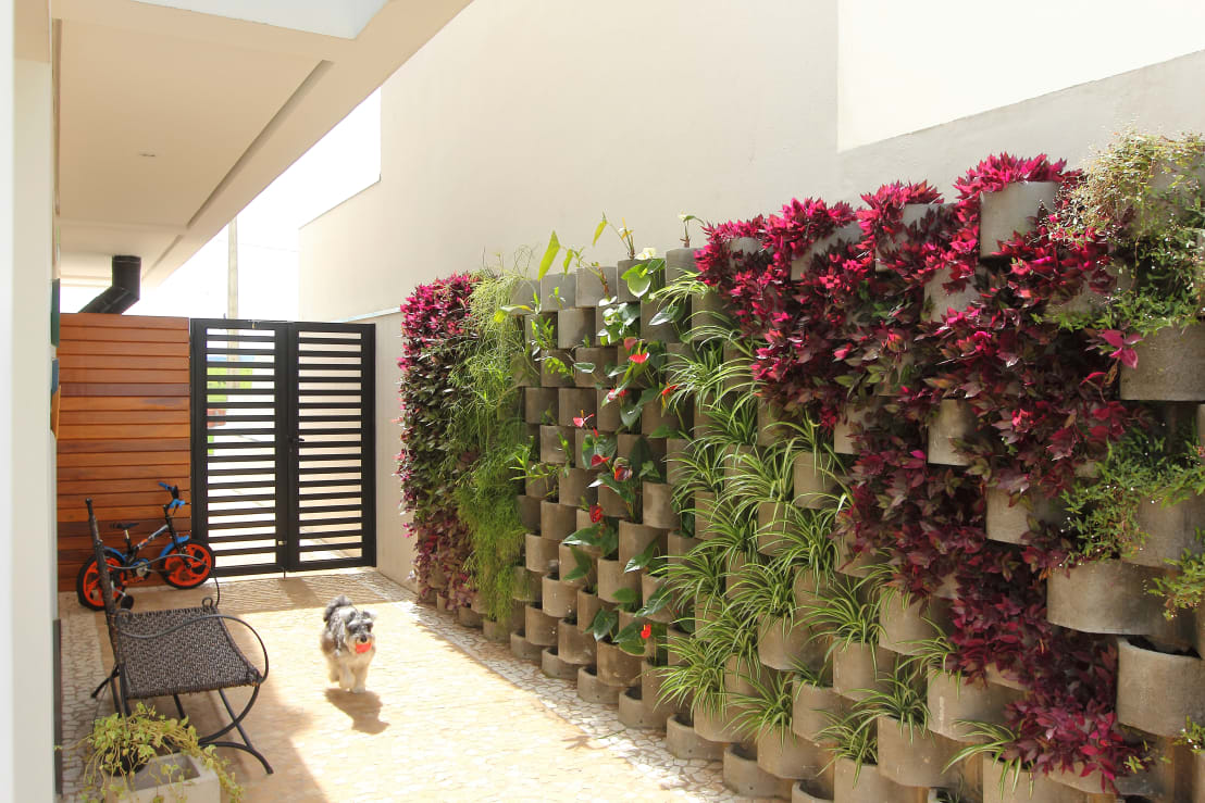 15 geniales ideas para decorar las paredes de tu patio for Jardines pequenos pegados a la pared