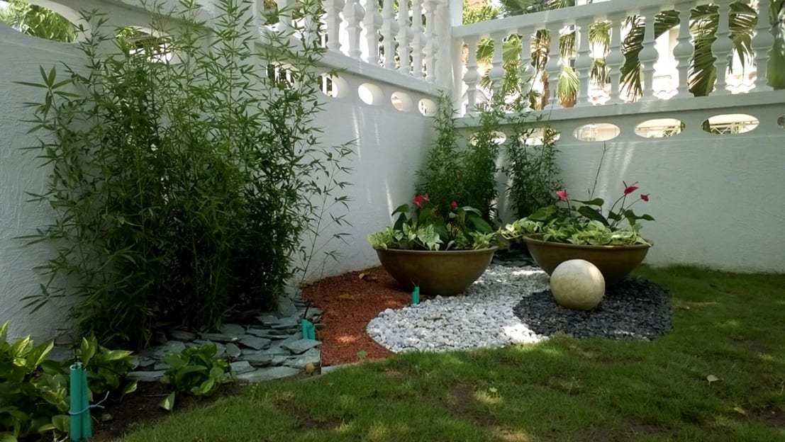 Plantas e ideas para el jard n for Decoracion de patios con piedras y plantas