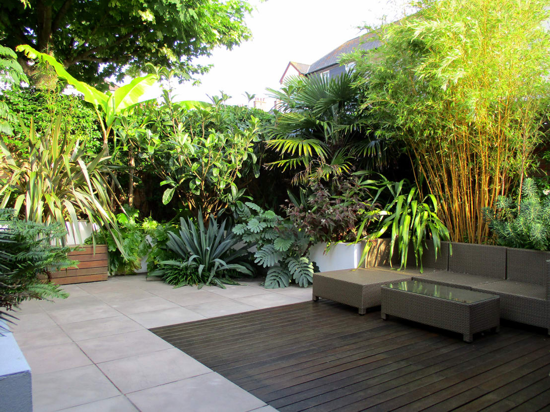 modern tropical garden design by post by lush garden design