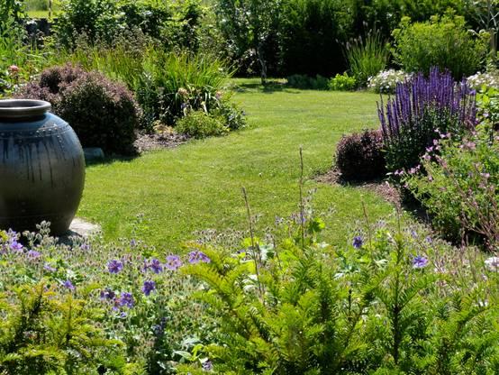 Conseils de jardinage pour le mois de juillet for Conseil de jardinage