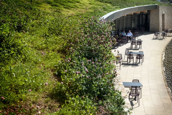 Gloucester Services Green Roof