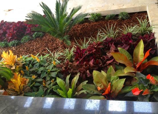 10 propuestas de jardines peque os y encantadores - Fotos de jardines modernos ...