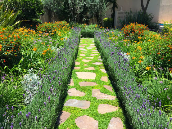 C mo armar un jard n repleto de flores - Como disenar un jardin grande ...