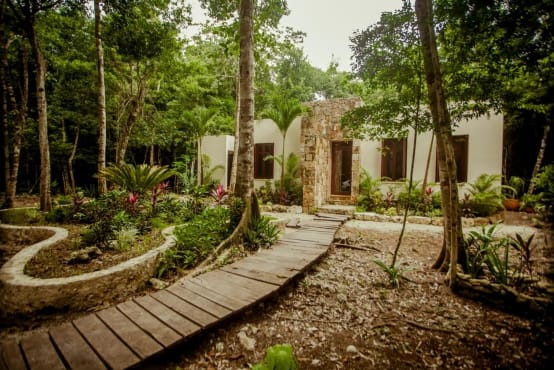 Casa na floresta encanta com design único!