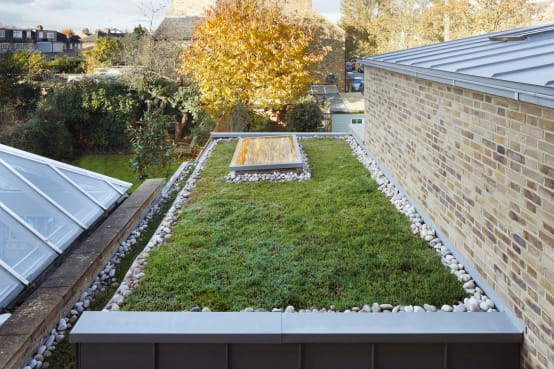 Exterior/Green Roof