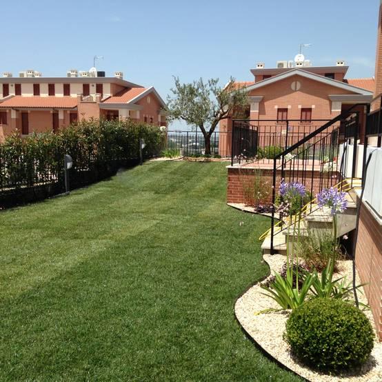 Un piccolo giardino in stile mediterraneo a roma - Progetto giardino mediterraneo ...