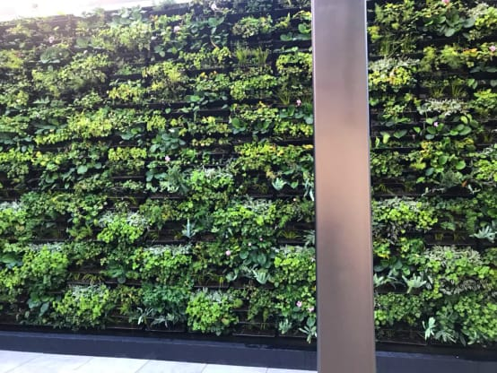 Ideas para decorar las paredes del jardín