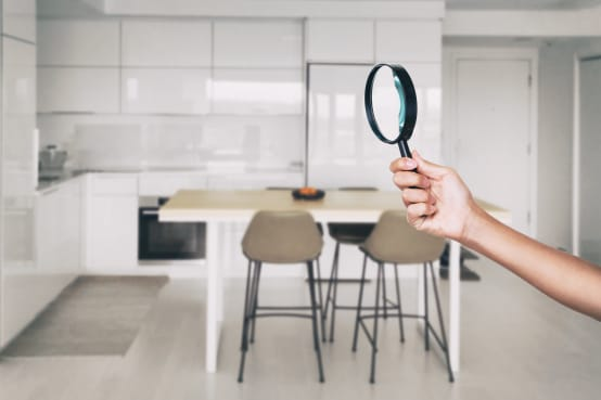 3 Reasons To Conduct Pest Inspections Before Buying A New Home | homify