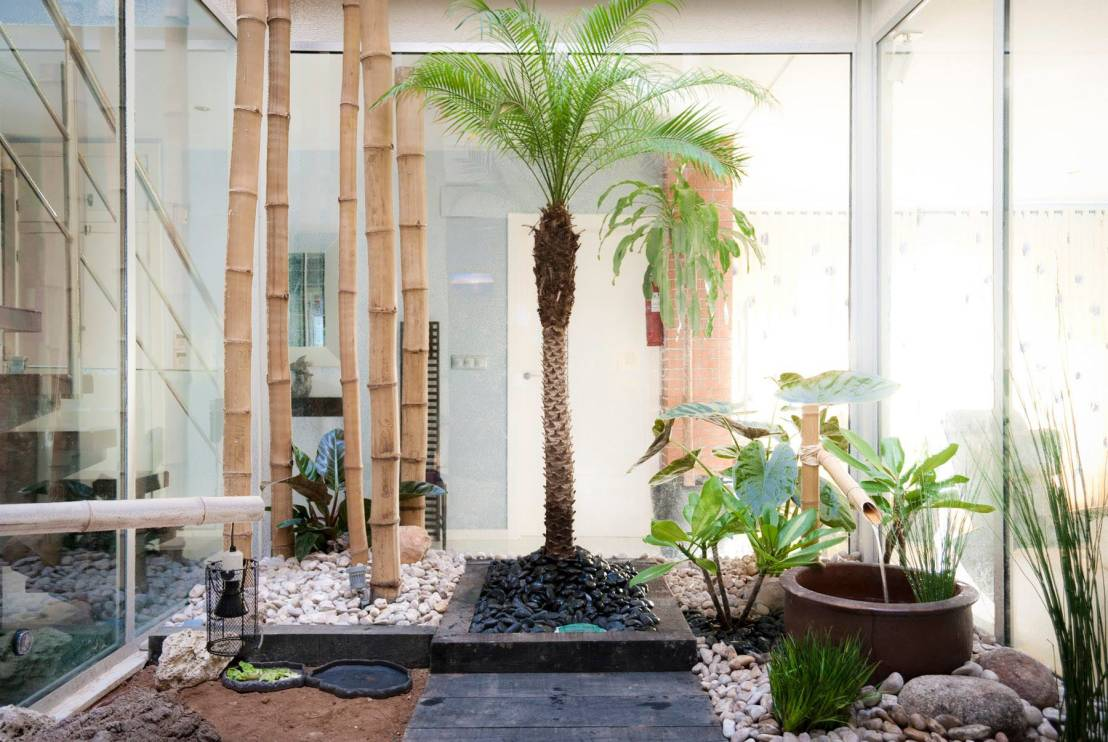 15 jardines interiores perfectos para casas modernas for Ideas de jardines interiores