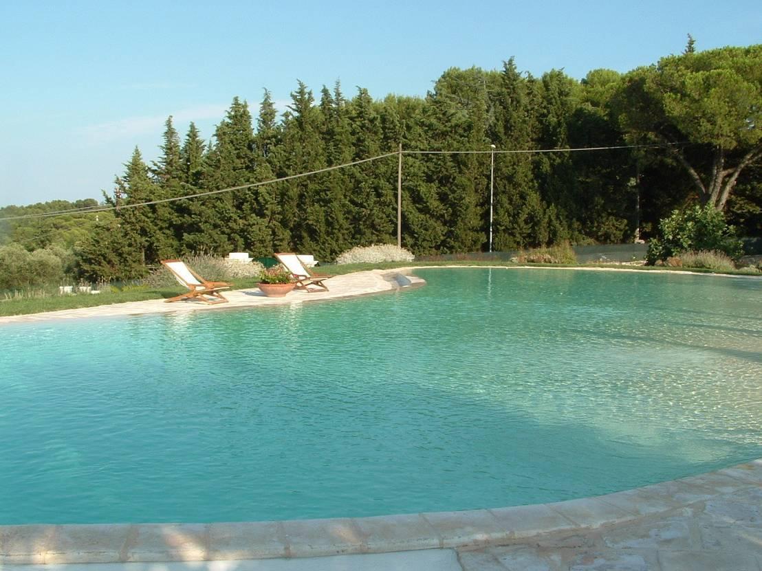Piscina e giardino in rocce e pietre naturali di massimo for Piscina in giardino