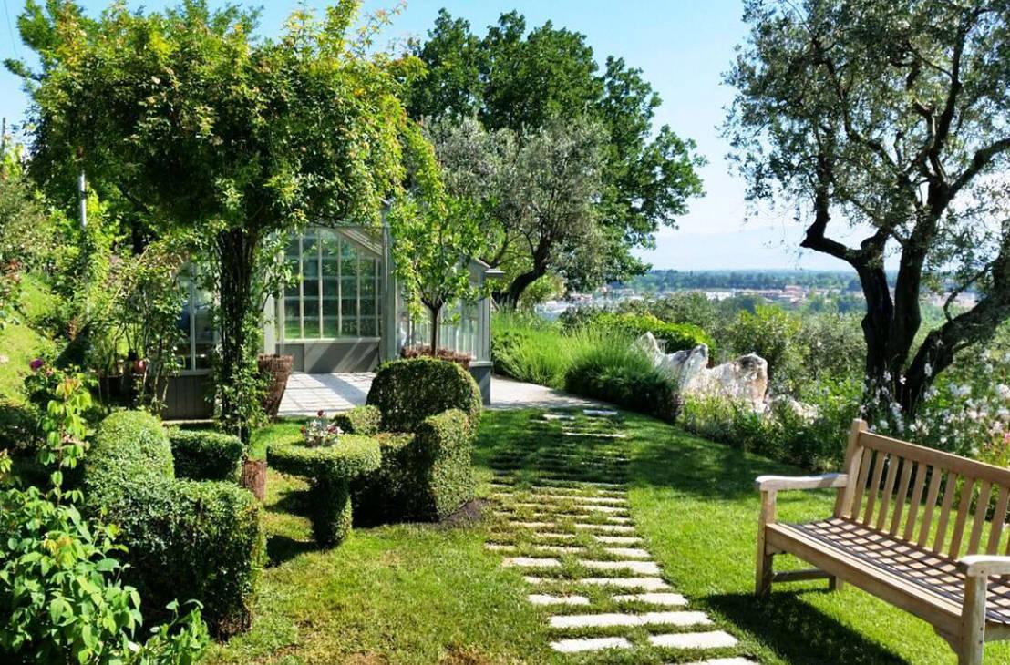 piante da esterno per un giardino da oasi verde