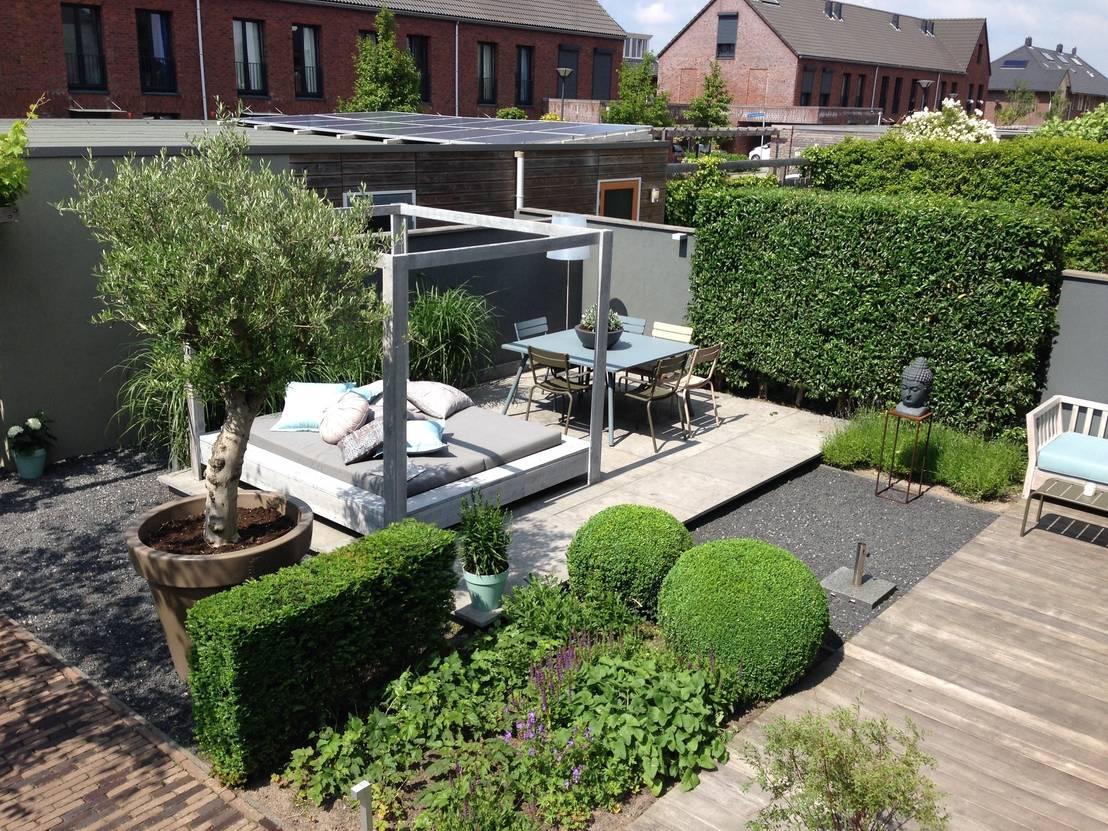 Een stralende tuin de wondermiddelen heb je zelf in huis for Huis in de tuin