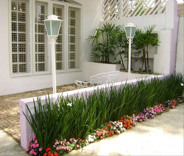 7 ideias para plantar um jardim na frente de casa for Plantas pequenas para jardin