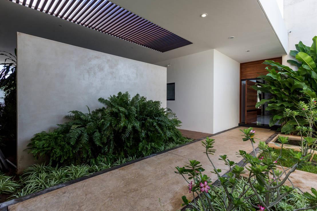 6 ideas de c mo crear en el pasillo un jard n sensacional for Jardines pequenos para casas modernas