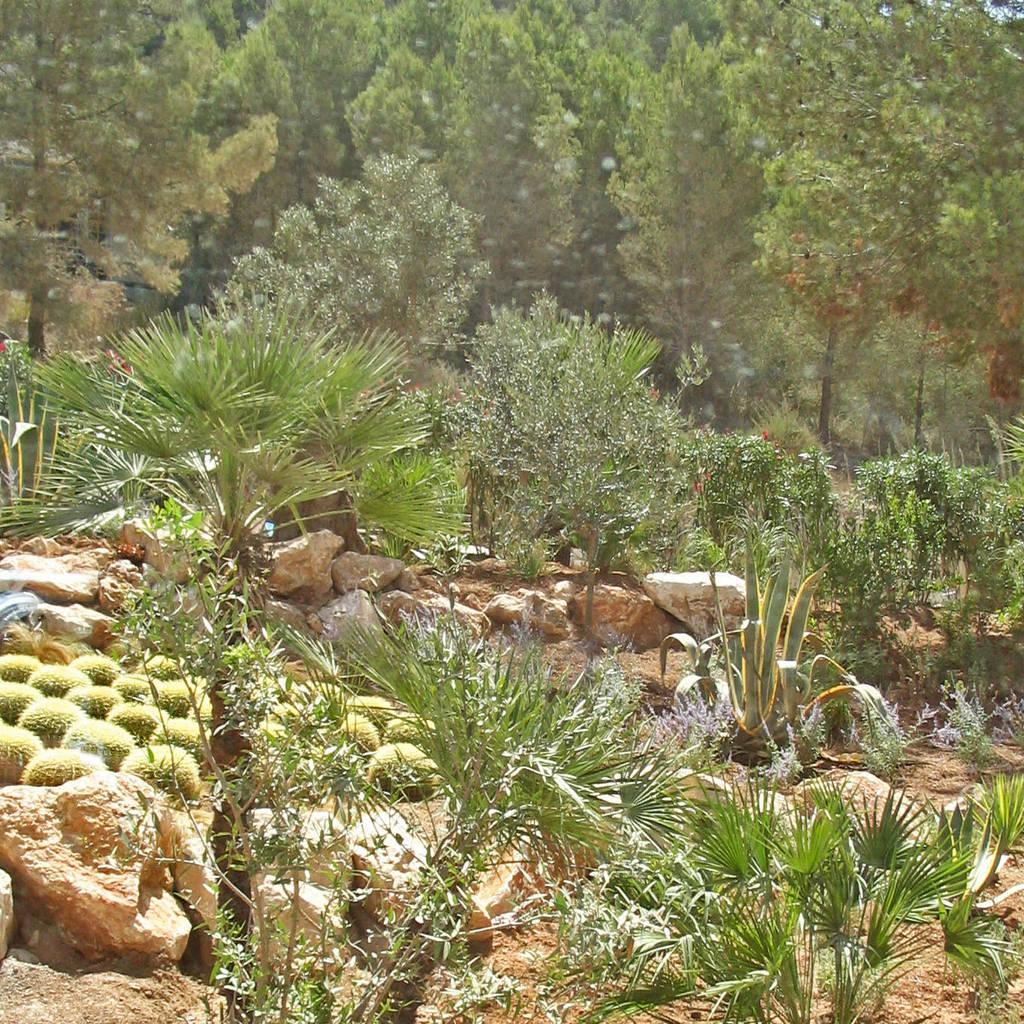 Mediterrane gartendeko mauer mediterran with mediterrane for Mediterrane gartendeko